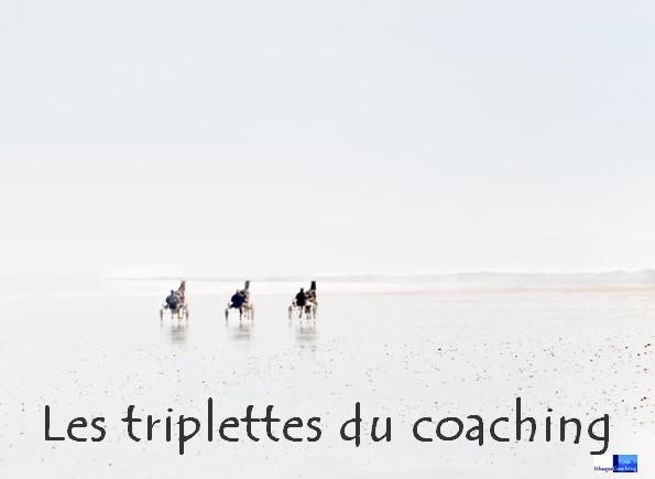 les triplettes opérationnelle et reltionnelle du coaching