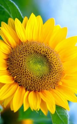 L'été: la saison des bilans et de la réflexion en mode décontracté