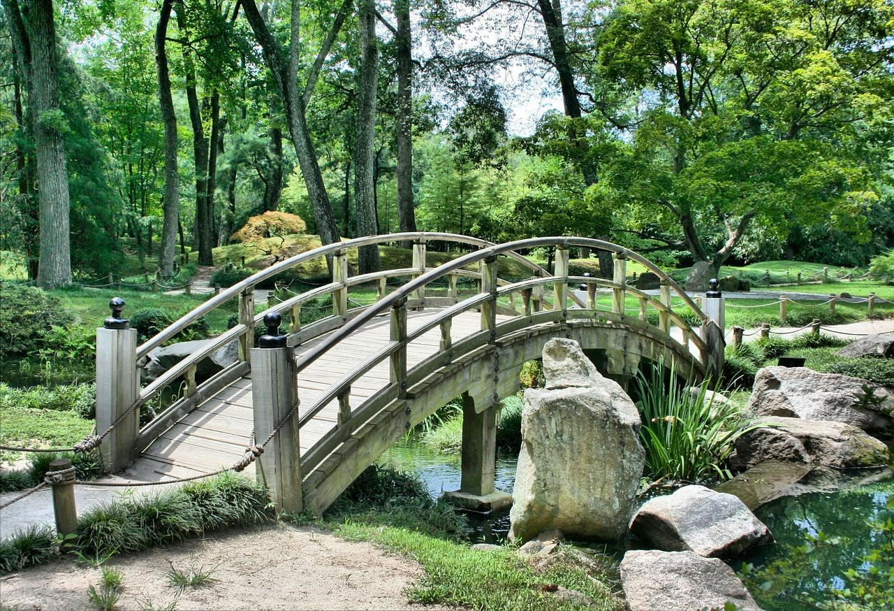 La reconversion des seniors en interne: un pont pour bifurquer en faisant un pas de côté