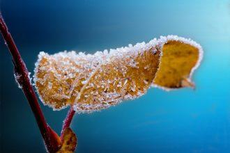 comment passer un bon hiver