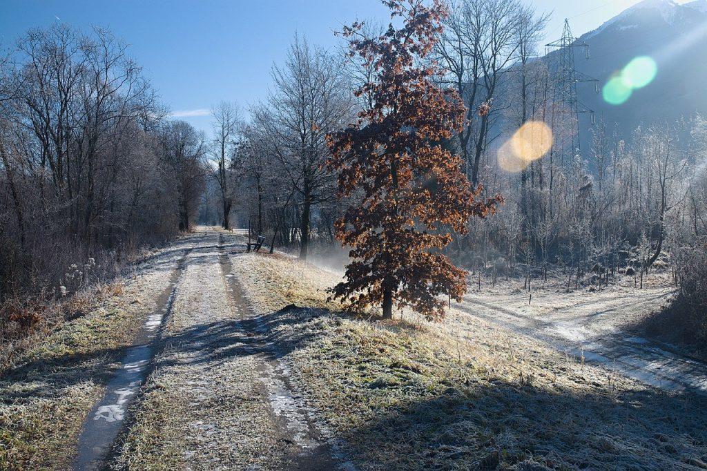 projet professionnel hiver