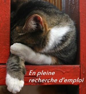 5 moyens infaillibles pour ne pas retrouver un emploi