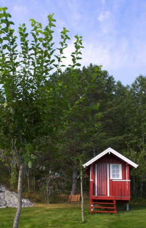 Défi de l'été: sortir de sa zone de confort
