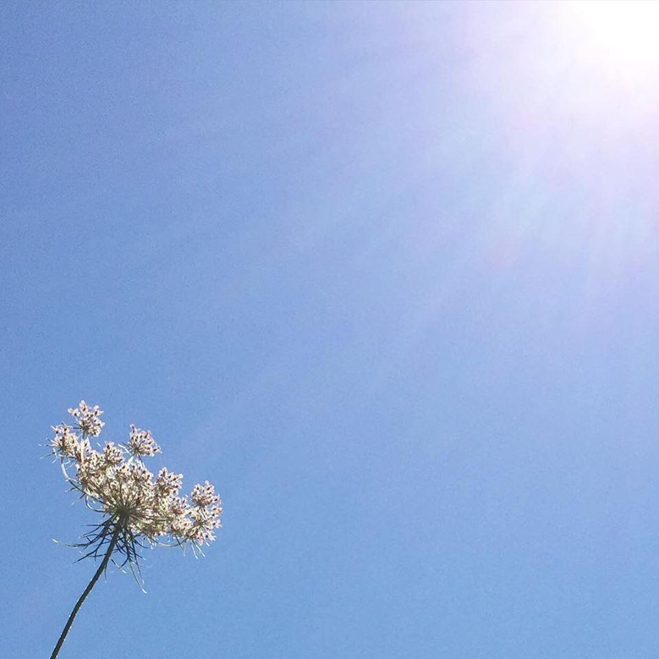 Besoin de respirer pour se détendre, se ressourcer, se préserver et réfléchir