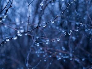 météo intérieure: des mots sur les émotions: tristesse
