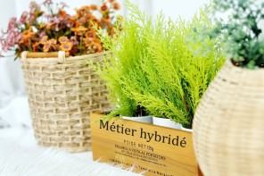 L'hybridation des métiers: chronique d'une reconversion annoncée