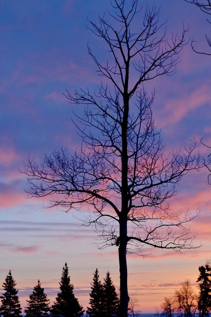 lumiere-pastel-hiver