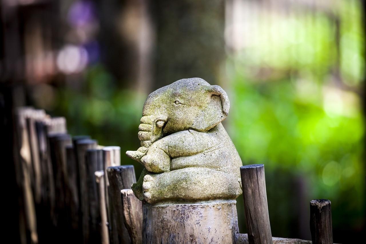 Dépasser les barrières des craintes sur la faculté d'apprendre dans un processus de reconversion