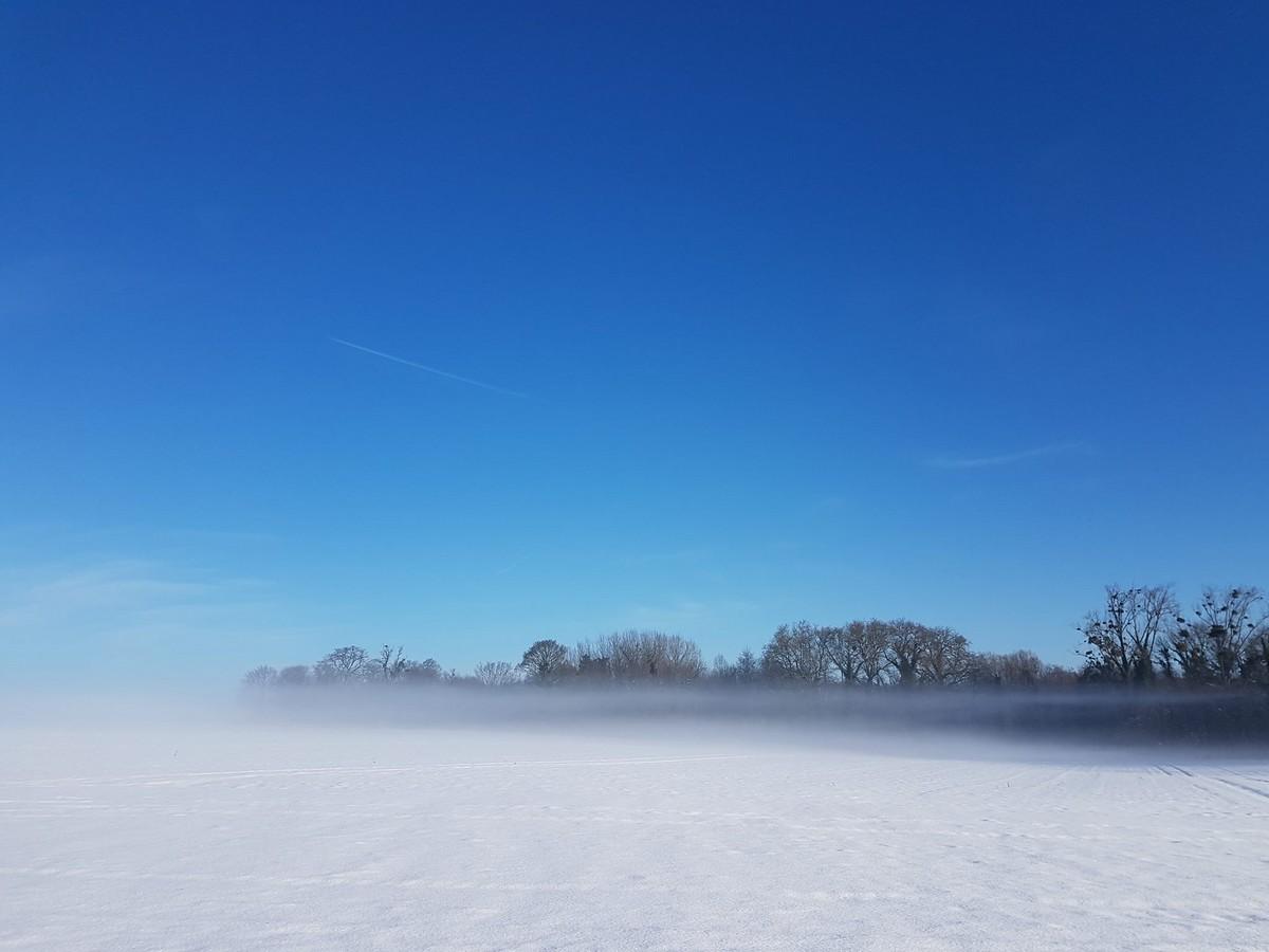 Une vague de froid, c'est pas non plus un hiver à Tunguska!