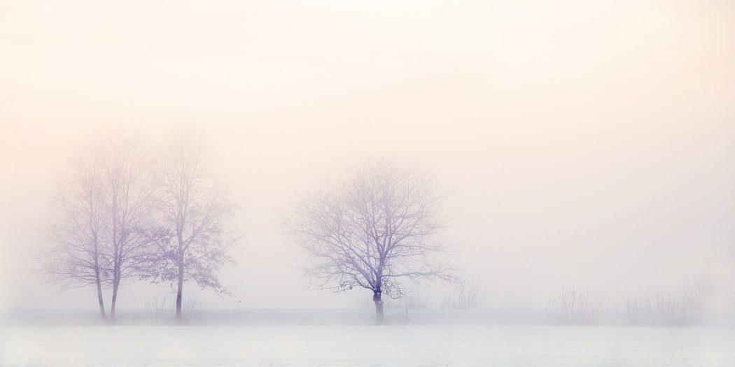 Philosophie de vie: chérir le souffle de la pensée, de la réflexion, plutôt que de la vérité ou des voies tracées