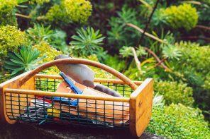 8 pistes de job crafting pour retrouver le plaisir de travailler